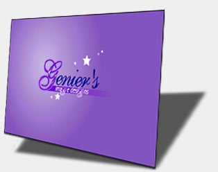 Flash logo:  Genier Designs.  Click here to view full animation