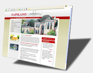 Real Estate Flash Web Design